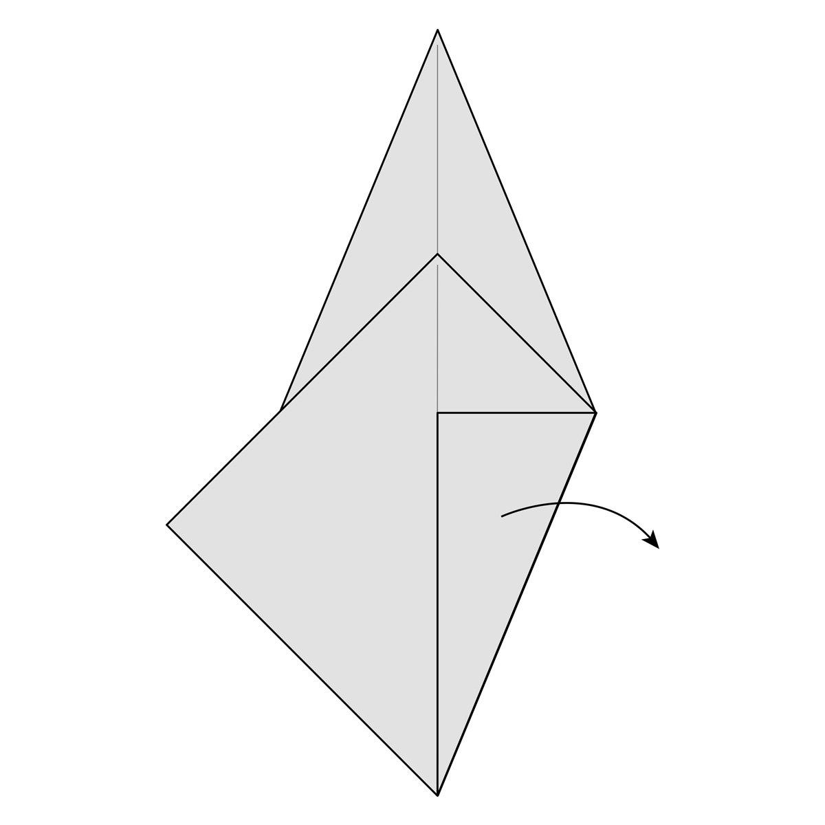 Crane Step 19