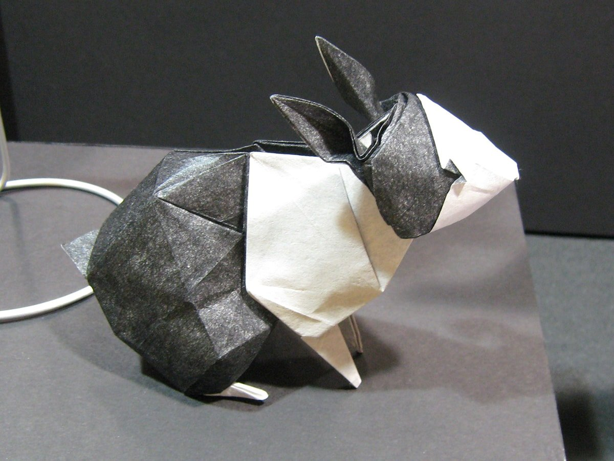 Rabbit by Seth Friedman