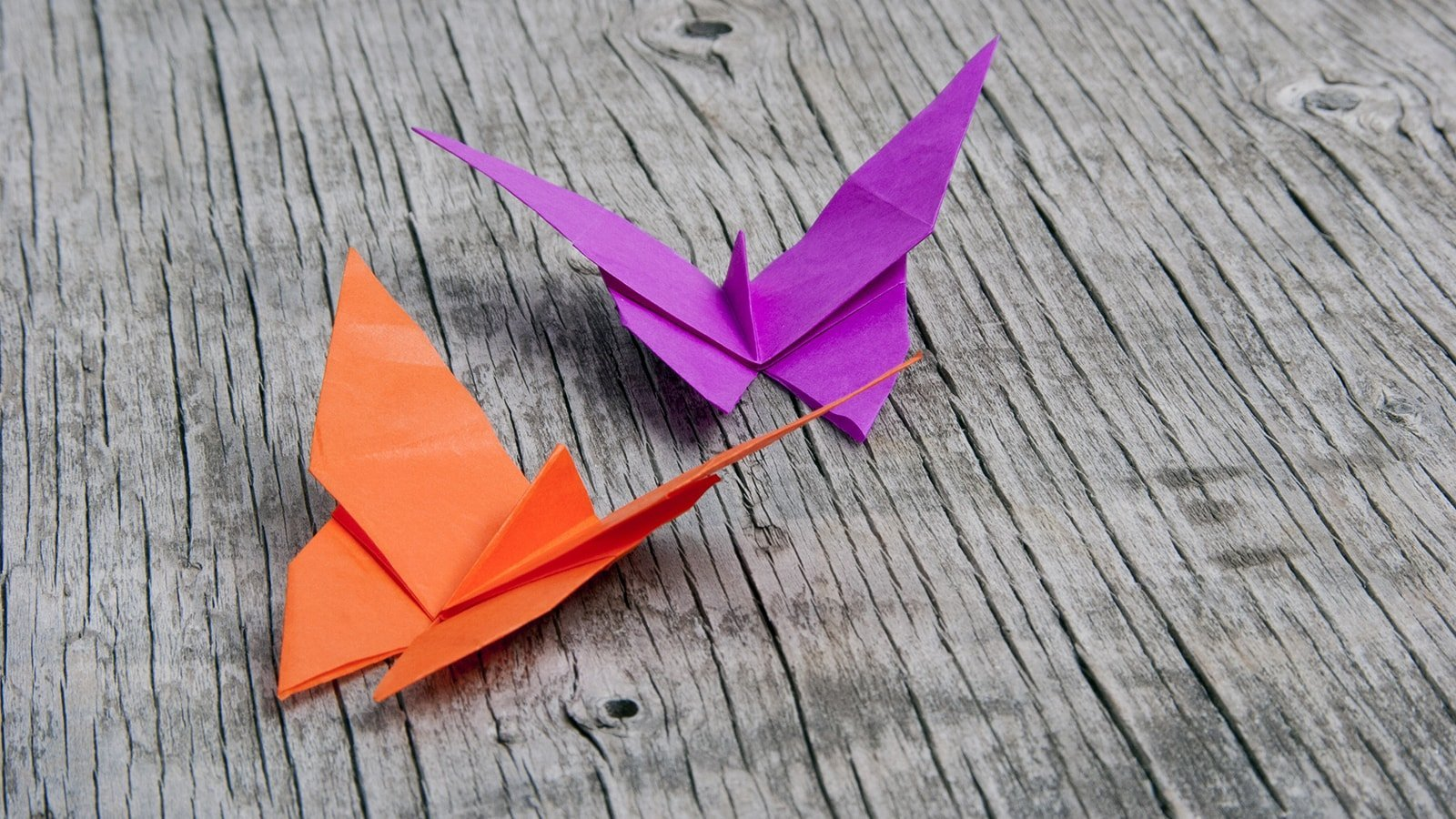 How to Fold an Easy Origami Butterfly - The Traditional ... - photo#17
