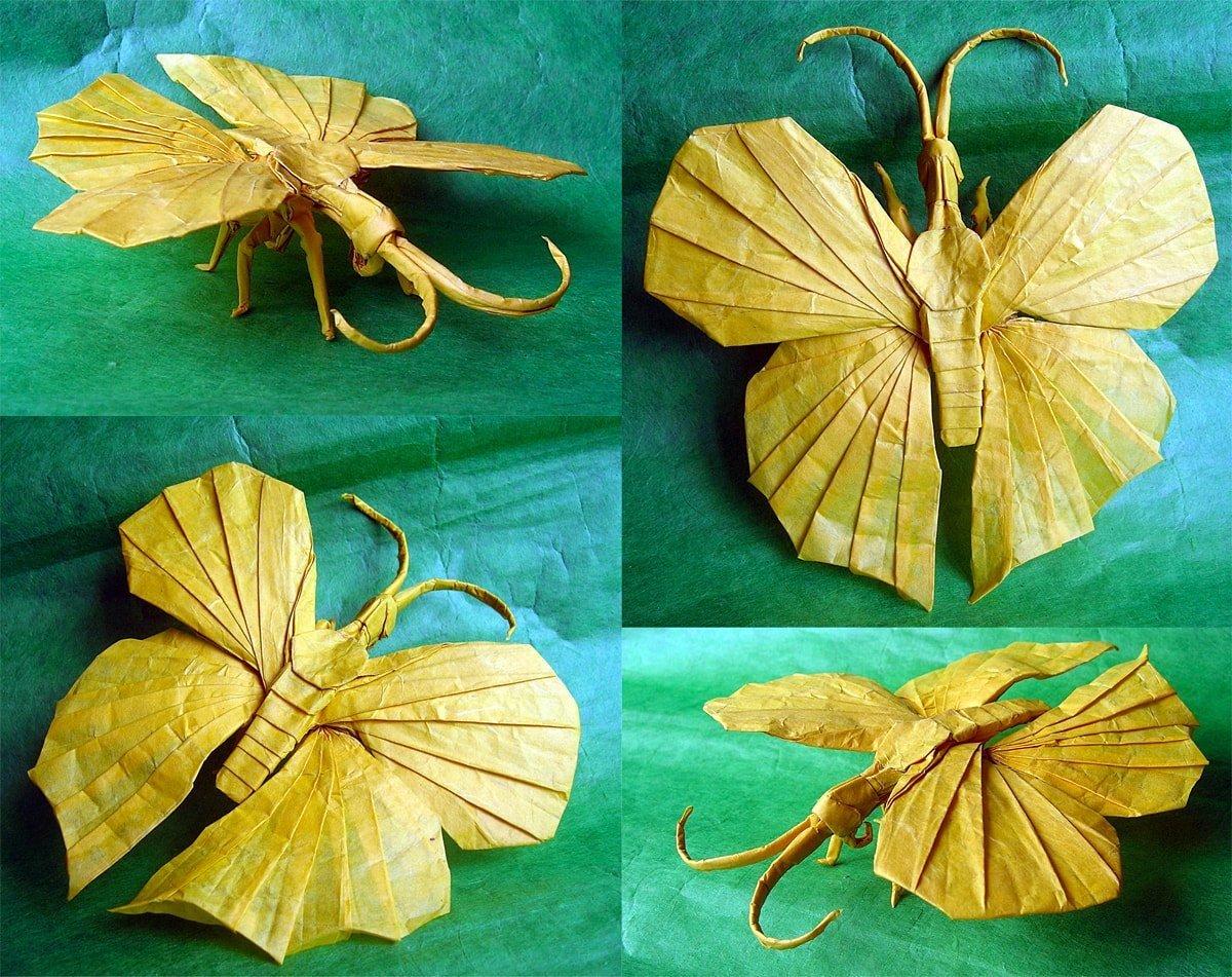 Op.25 Butterfly