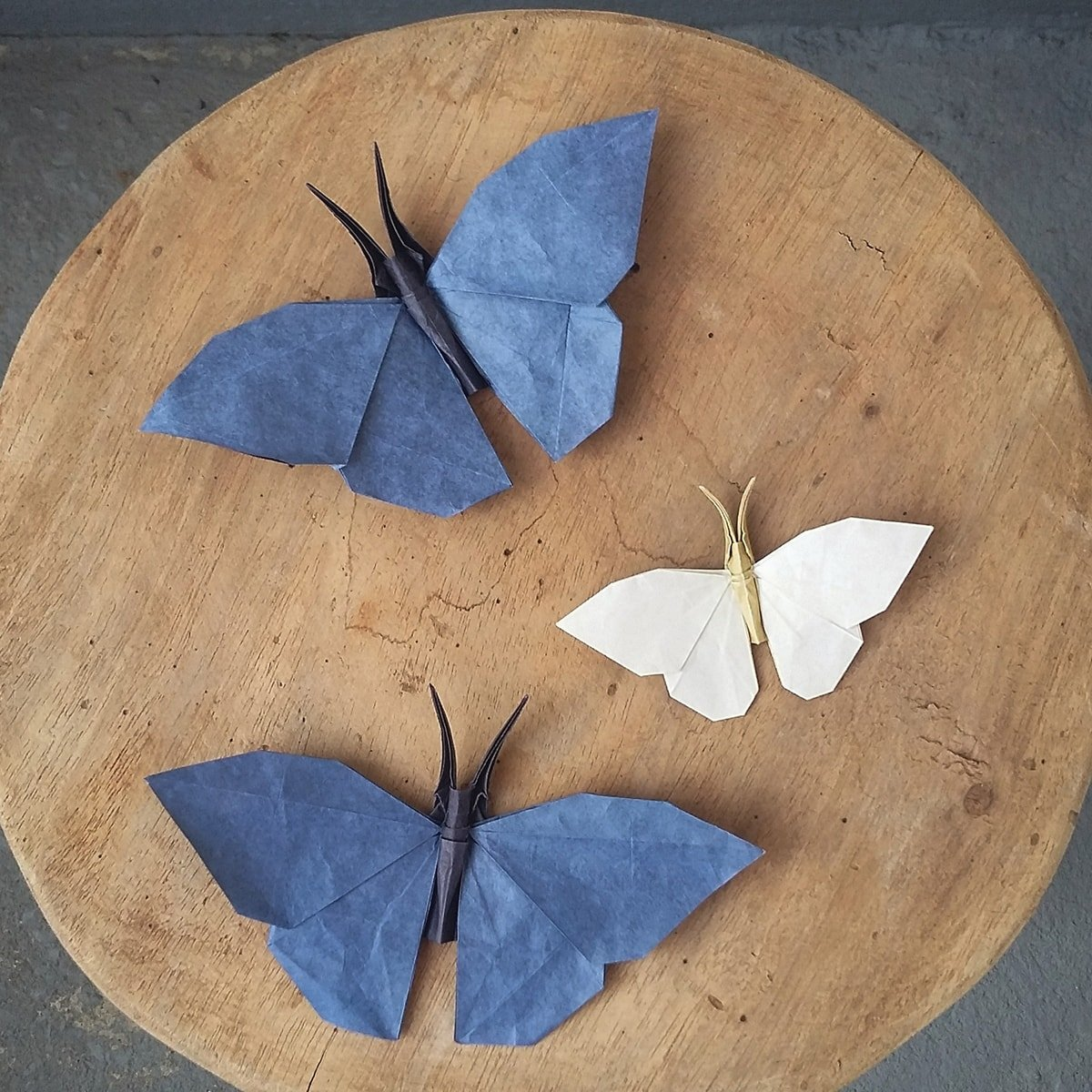 Three Origami Butterflies