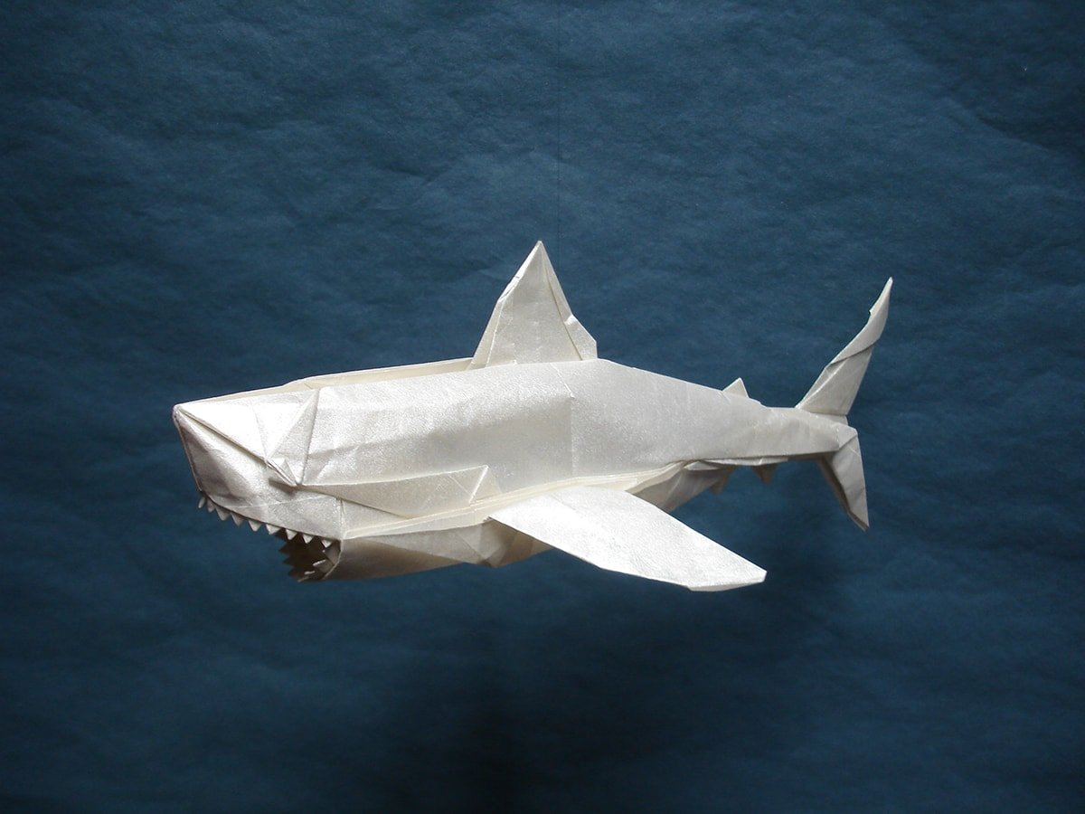 Great White Shark Folded by Shuki Kato