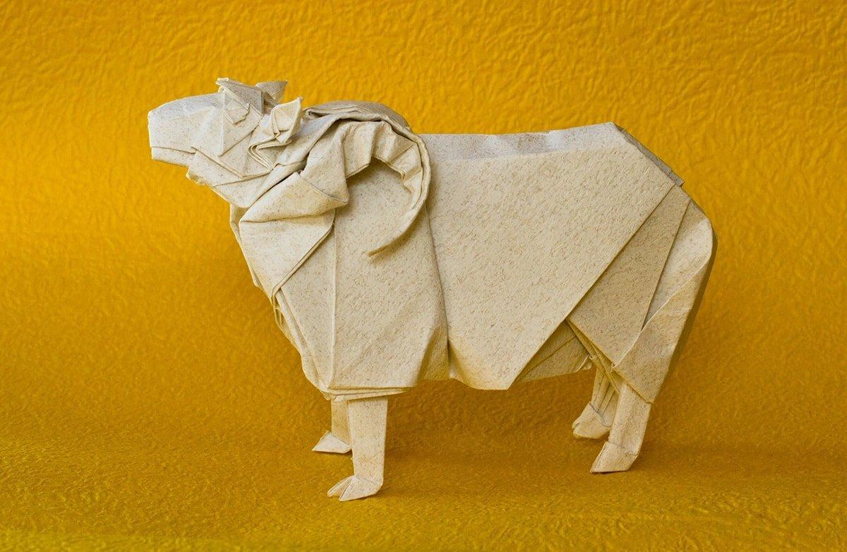 Satoshi Kamiya's Sheep