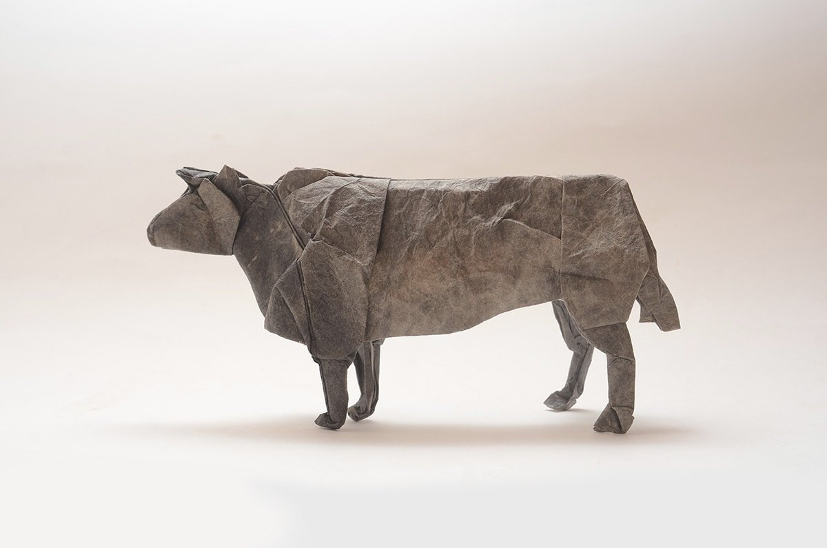 Japanese Cattle by Kei Watanabe