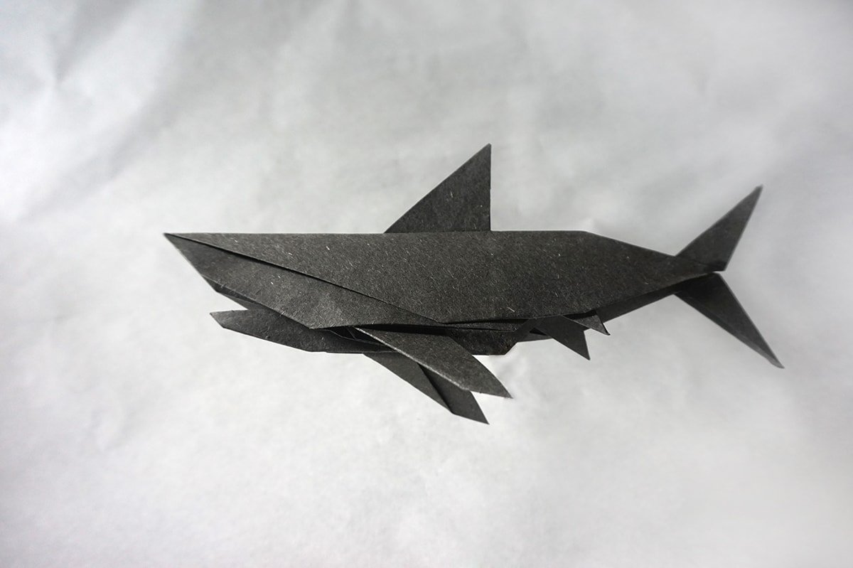 Paper Shark by Obelisk