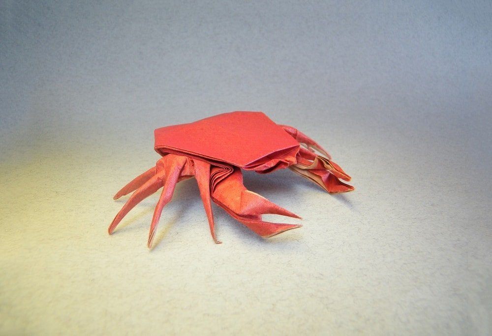 Crab by Fernando Castellanos