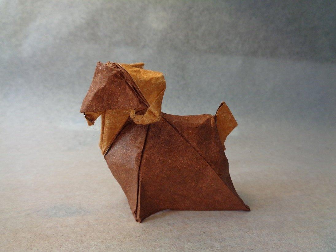 Goat by Nguyên Hùng Cu'ò'ng