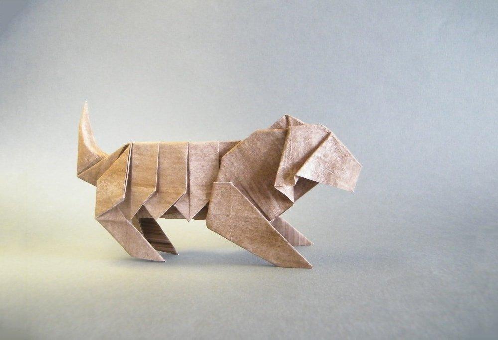 Tiger by Oriol Esteve