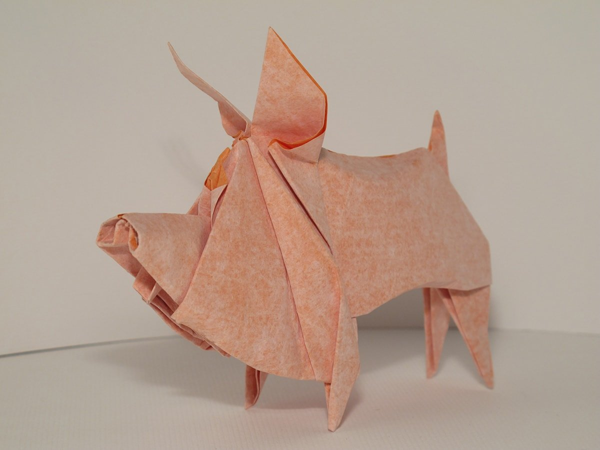 Pig by Cyrille Masseys