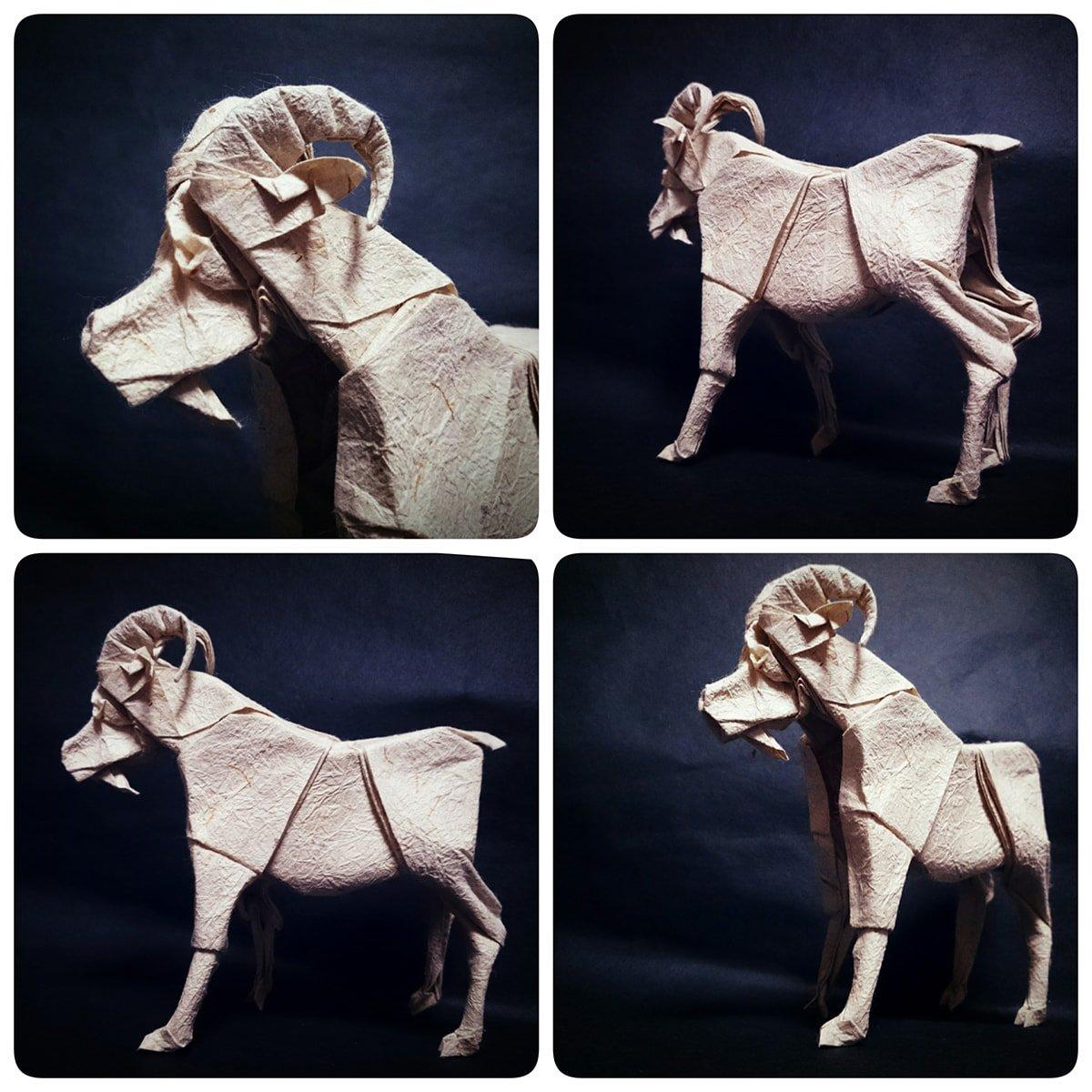 Goat by Taiga Yamamoto