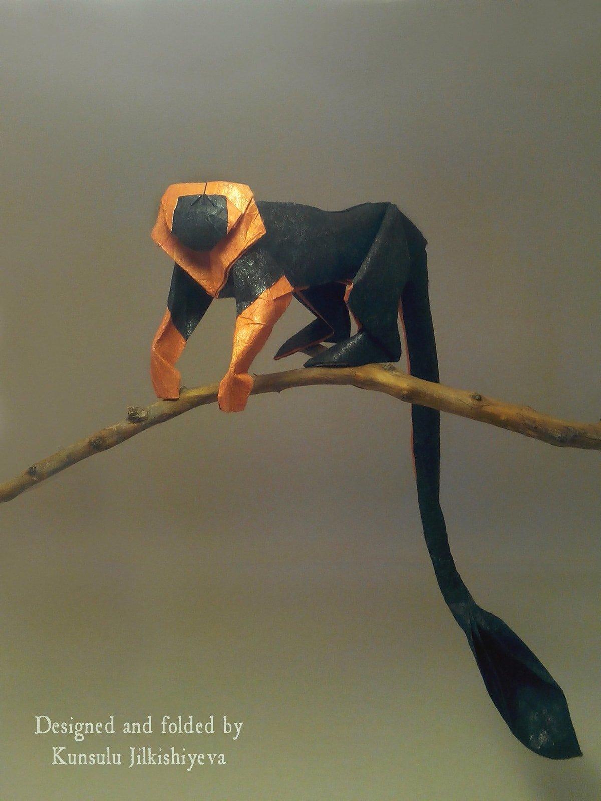 Lionhead Tamarin by Kunsulu