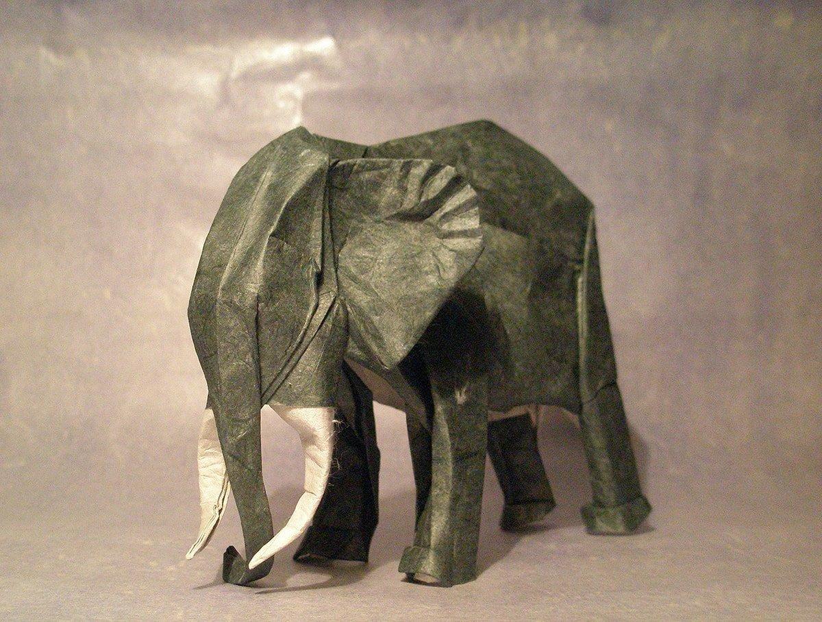 Elephant by Artur Biernacki
