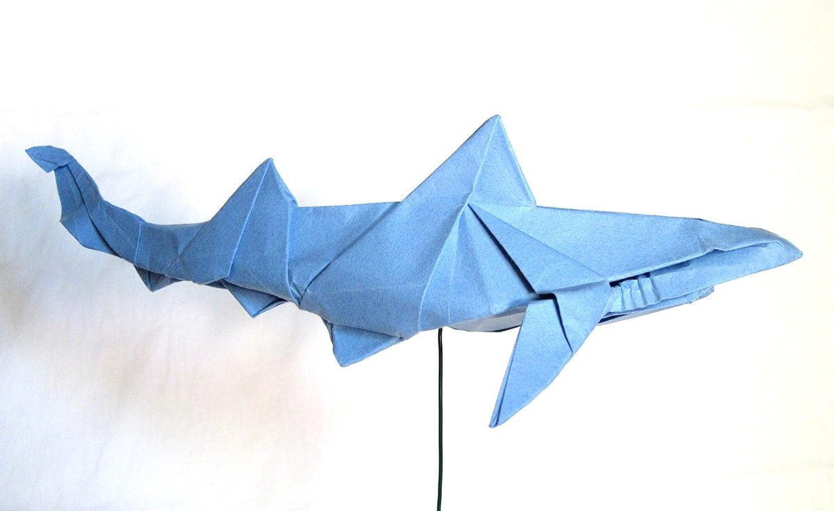 Blue Shark by Winston