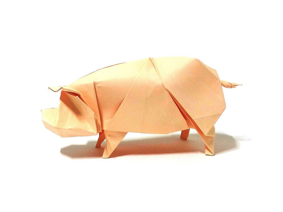 Pig by Jaeil Jeong