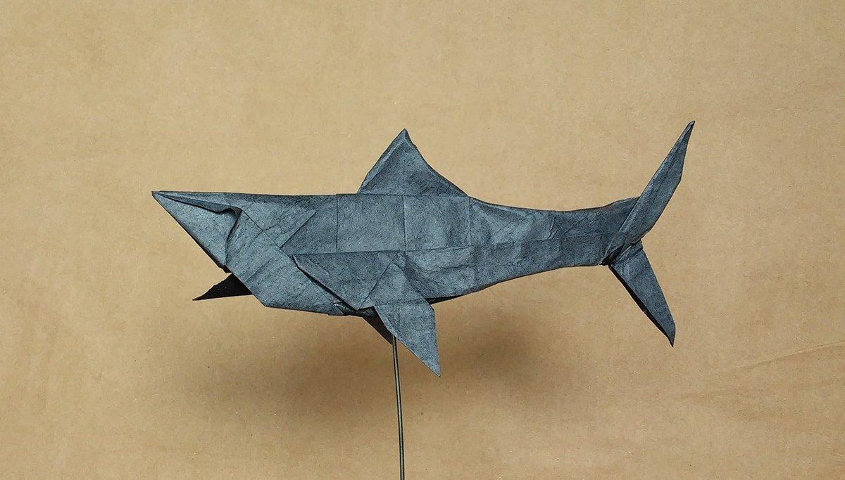 Origami Shark by Tomasz Krawczyk