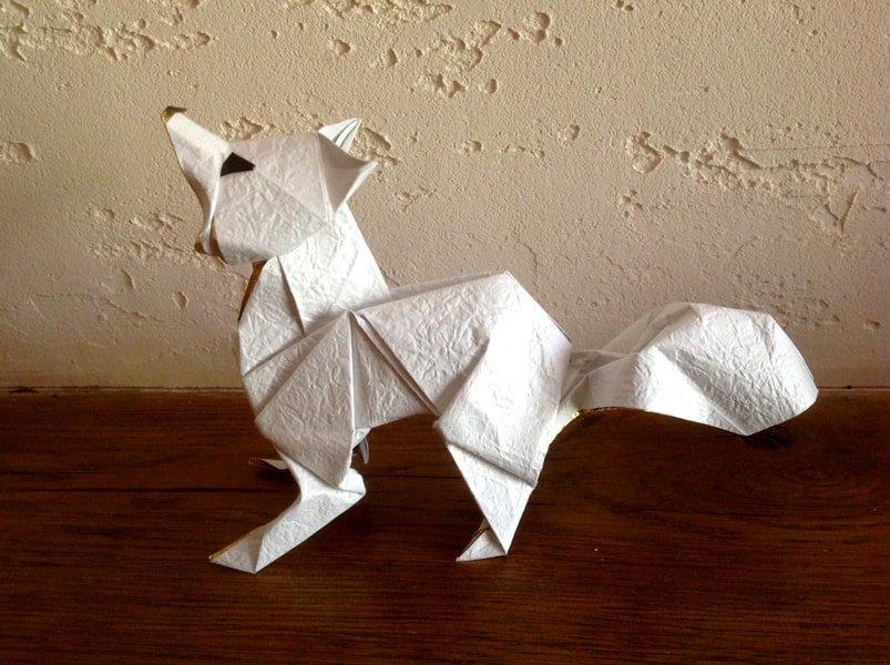 Arctic Fox - Oriol Esteve