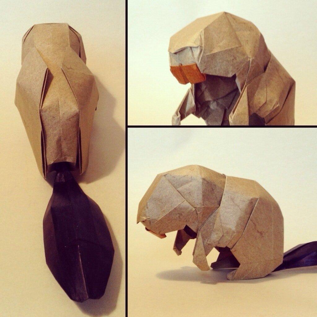 Beaver - Joseph Wu