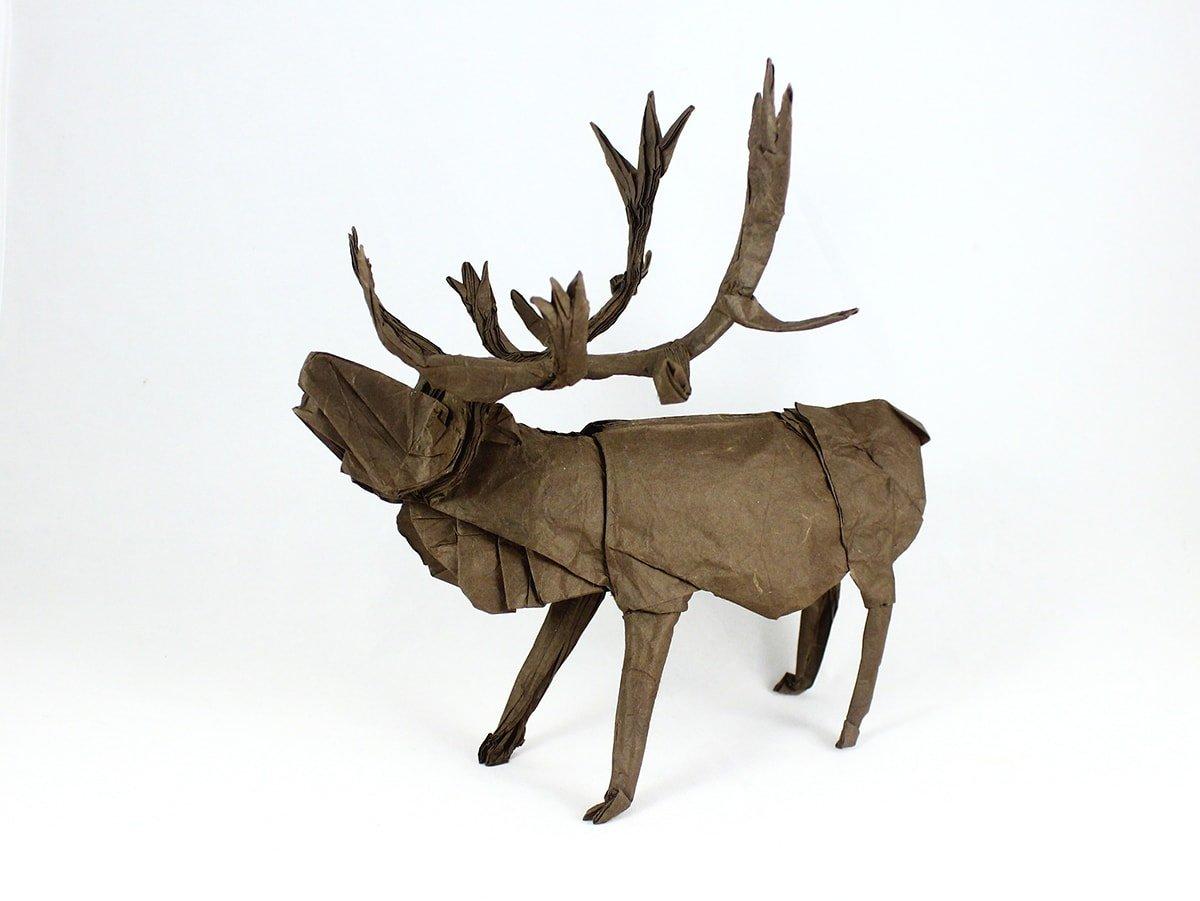 Caribou by Satoshi Kamiya