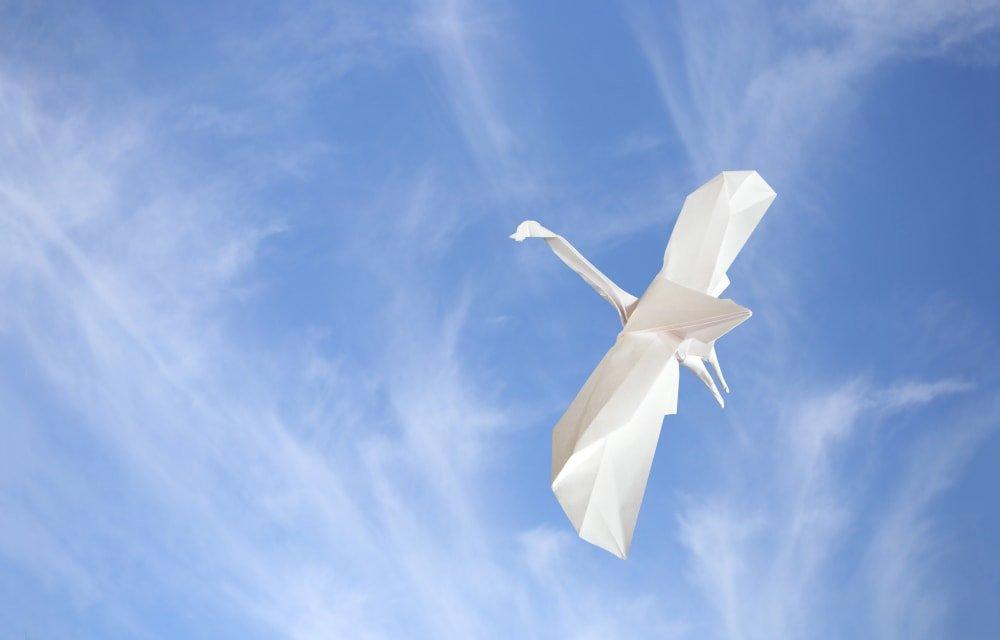 Crane in Flight - Anade en Vuelo - Choi Dong Gyu