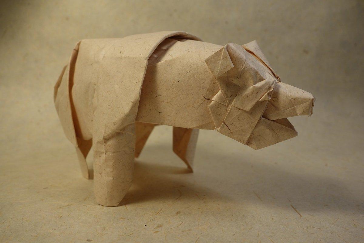 Grizzly Bear - Seth Friedman