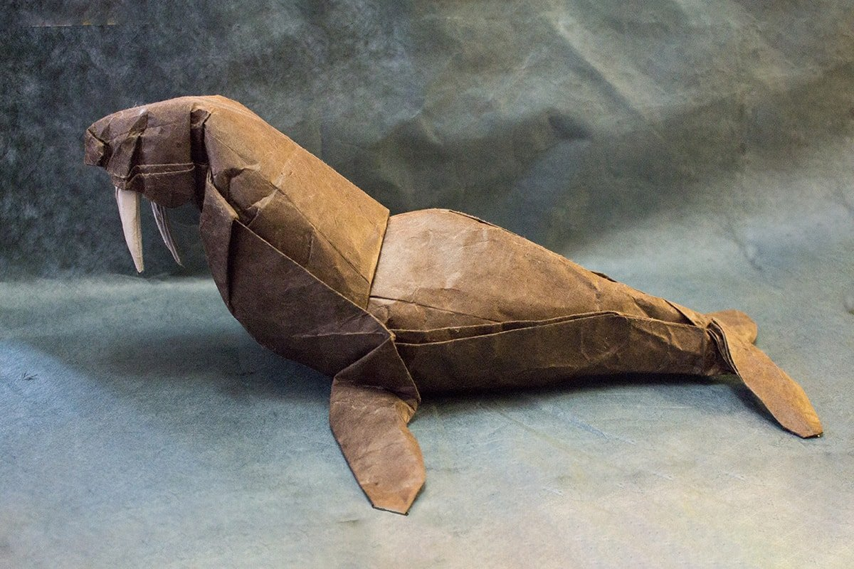 Paper Walrus