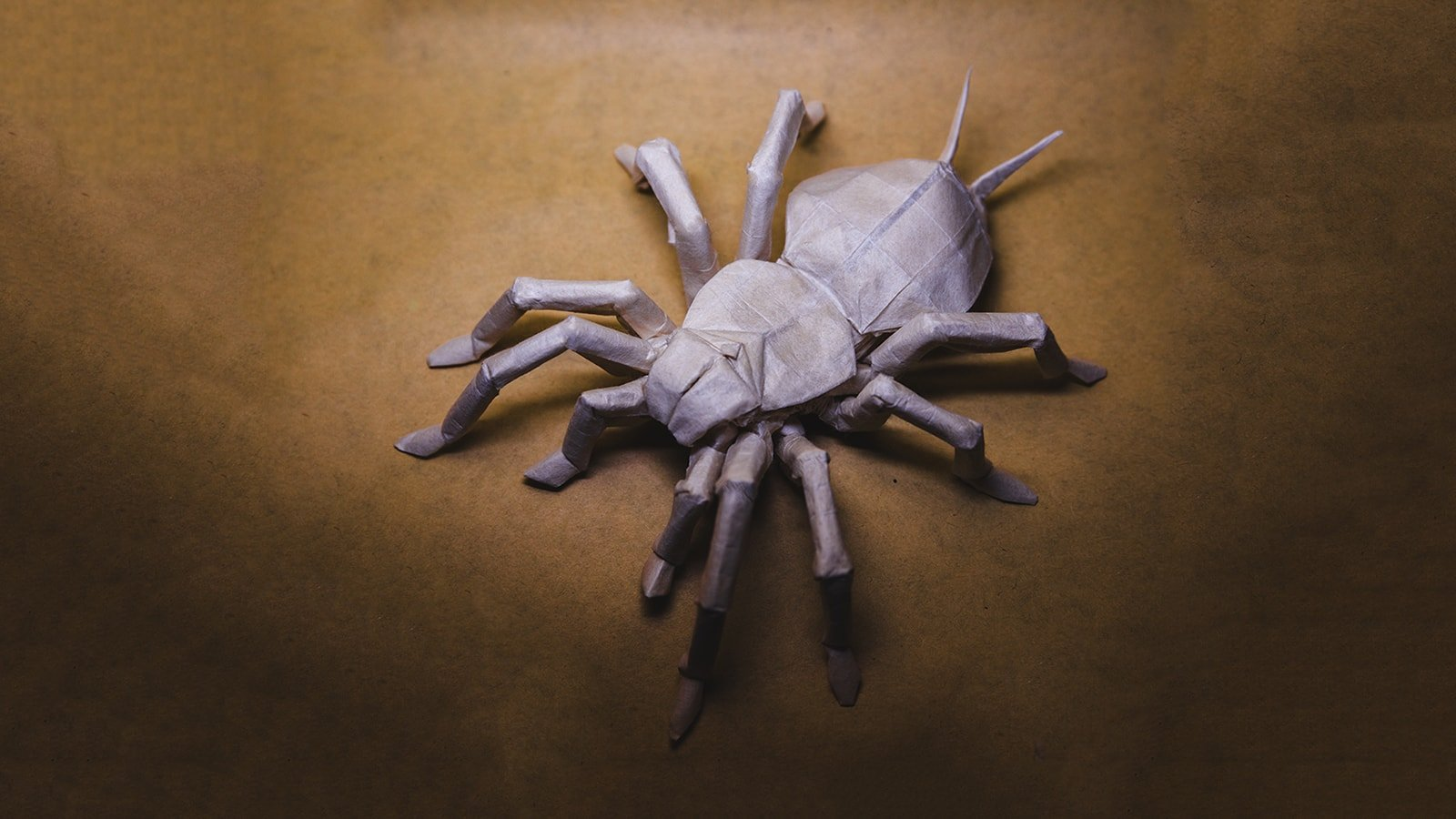 How to make: Creepy Origami Spider - YouTube | 900x1600