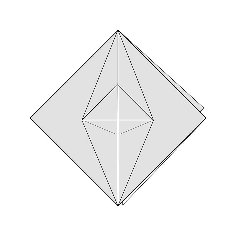 Petal Fold Variation