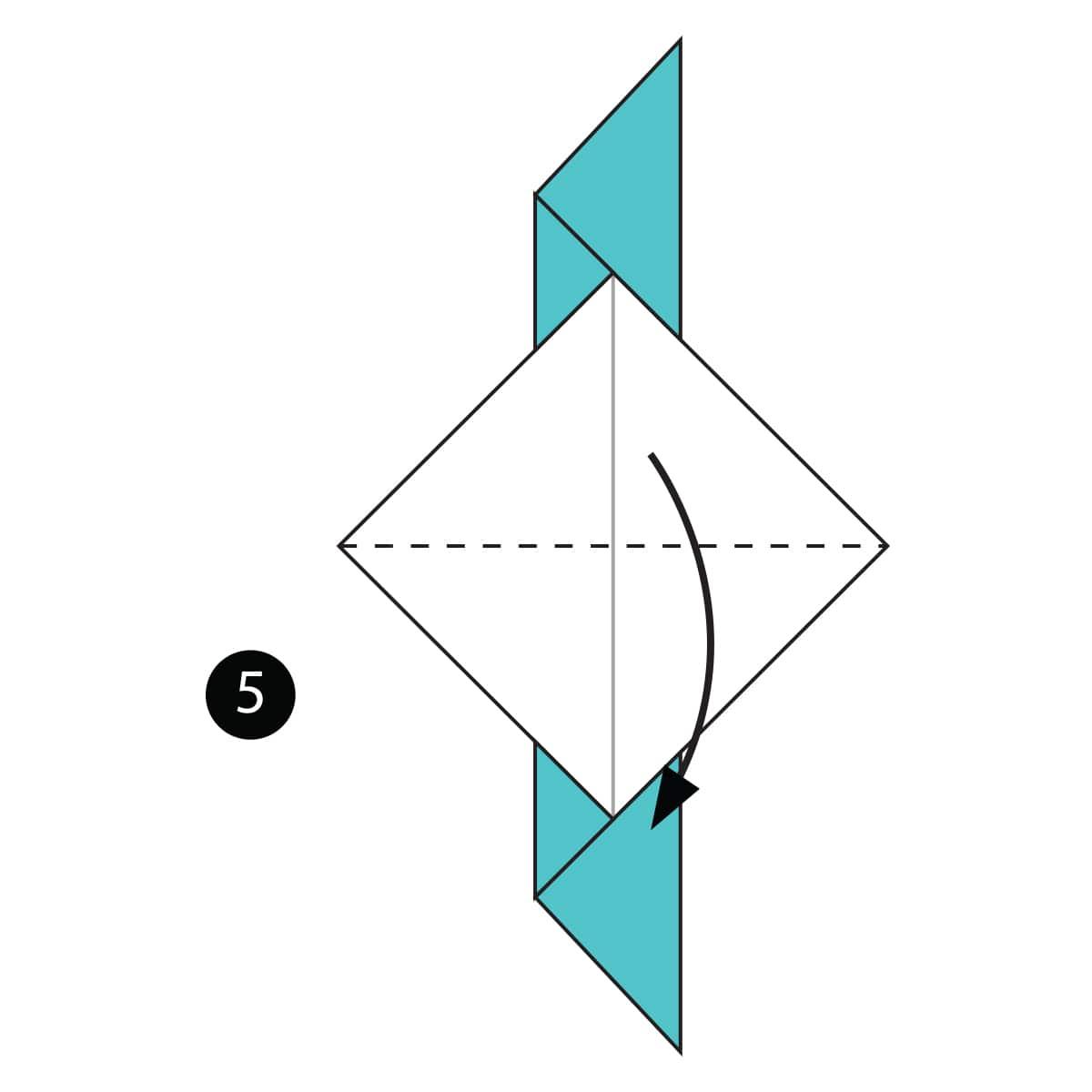 Pigeon Step 5