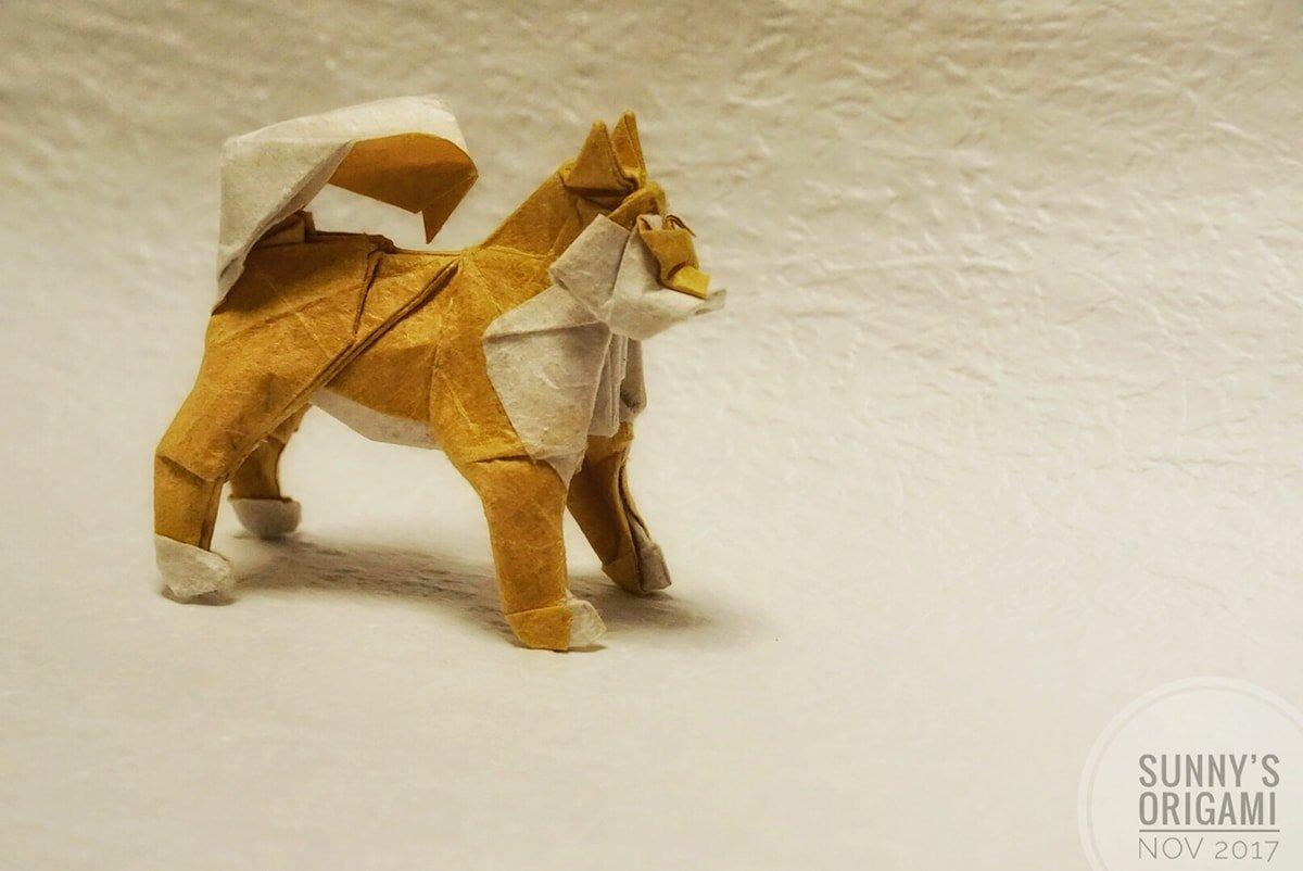 Satoshi Kamiya's Dog