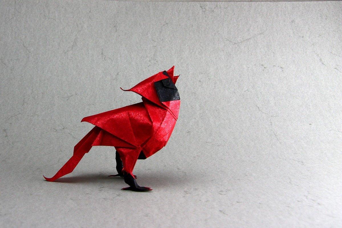 Cardinal by Roman Diaz