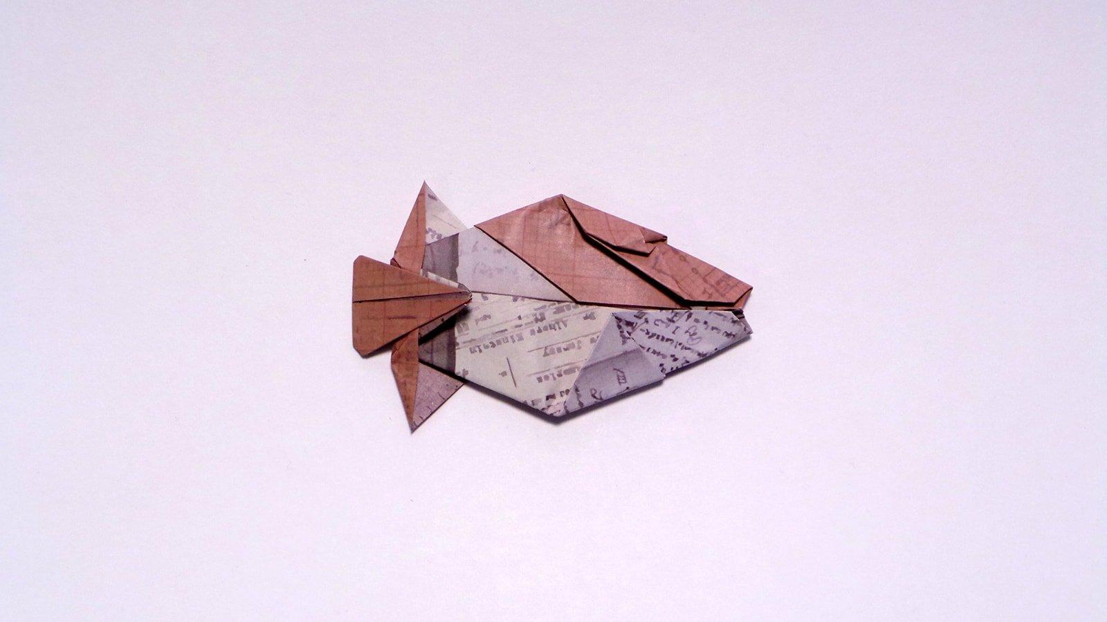 Humuhumunukunukuapua'a folded by Me