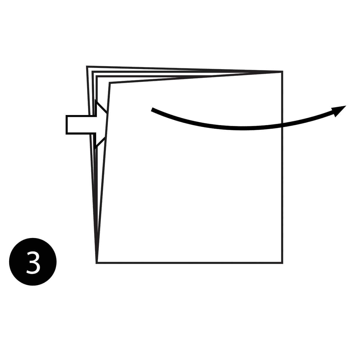 Angelfish Step 3