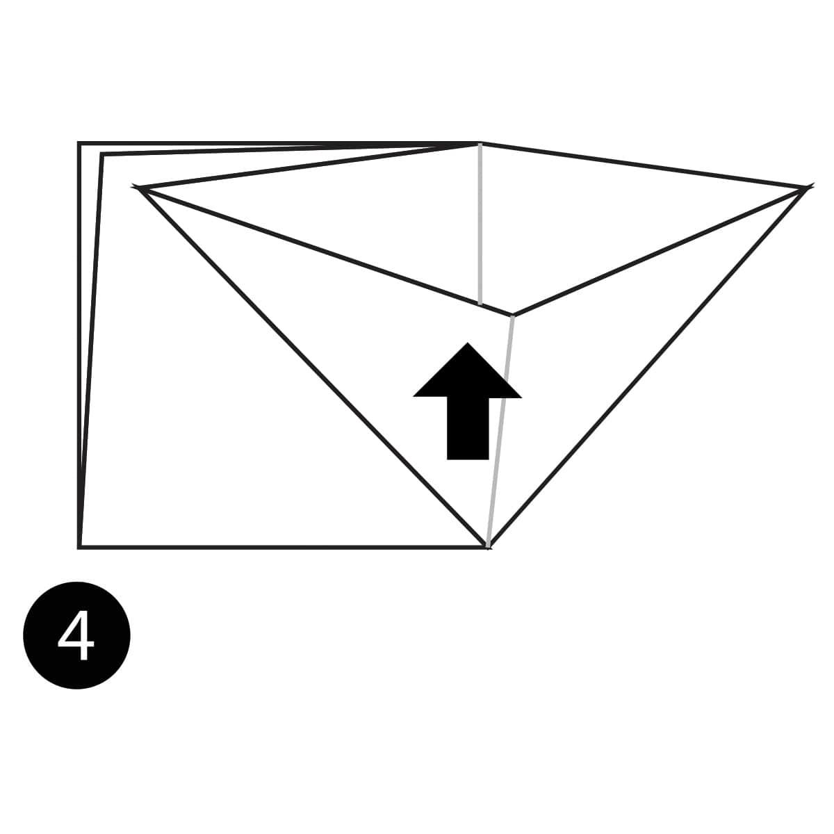 Angelfish Step 4
