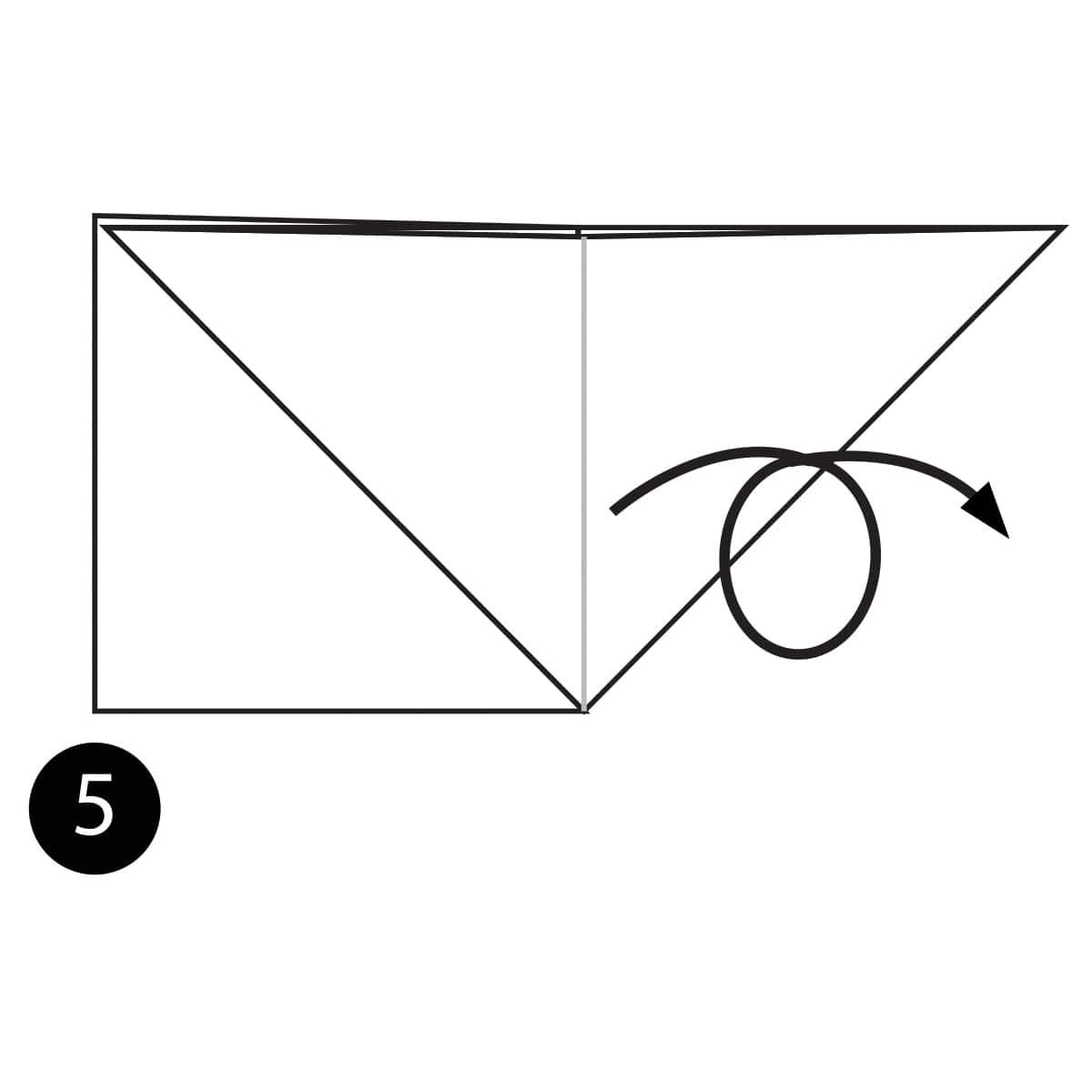 Angelfish Step 5