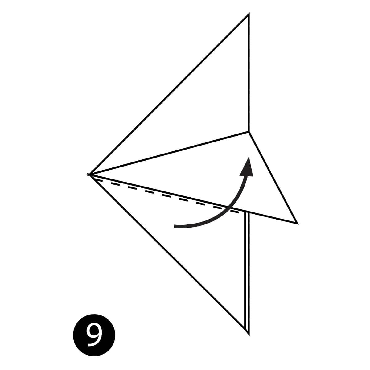 Angelfish Step 9