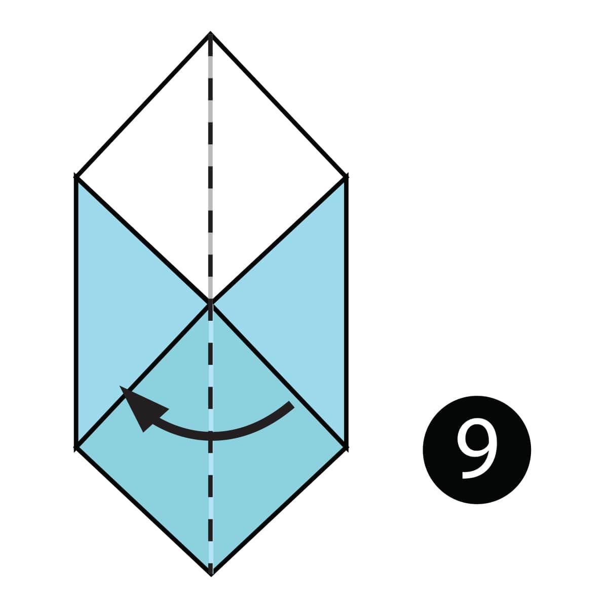 Box Step 9