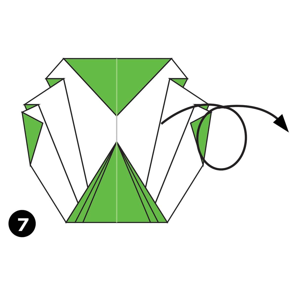 Cabbage Step 7