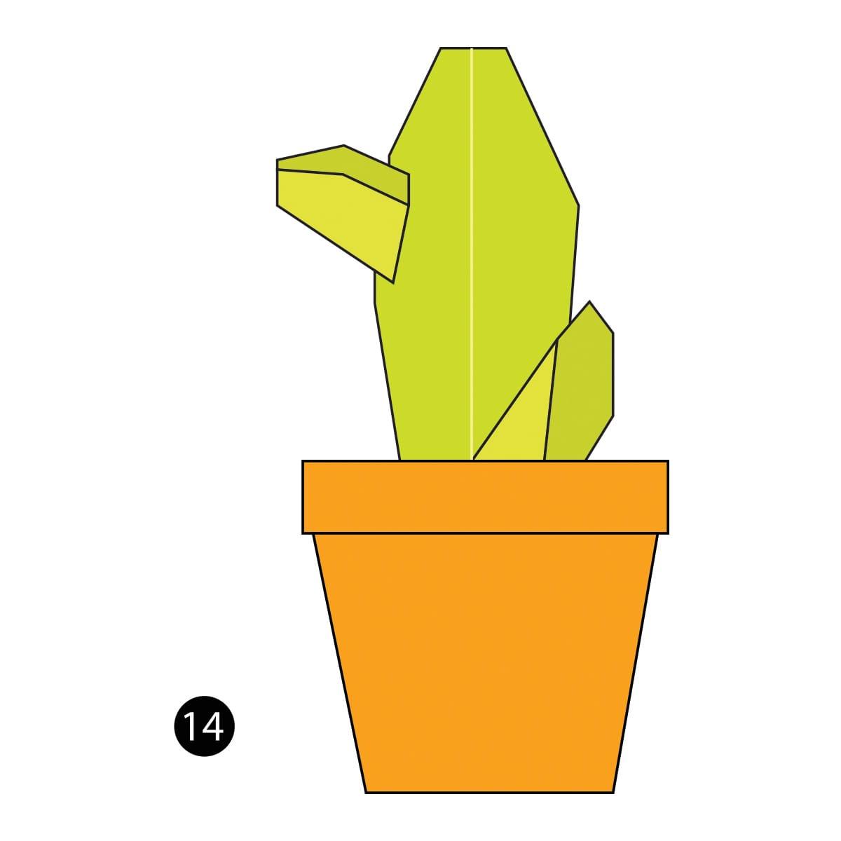 Cactus Step 14