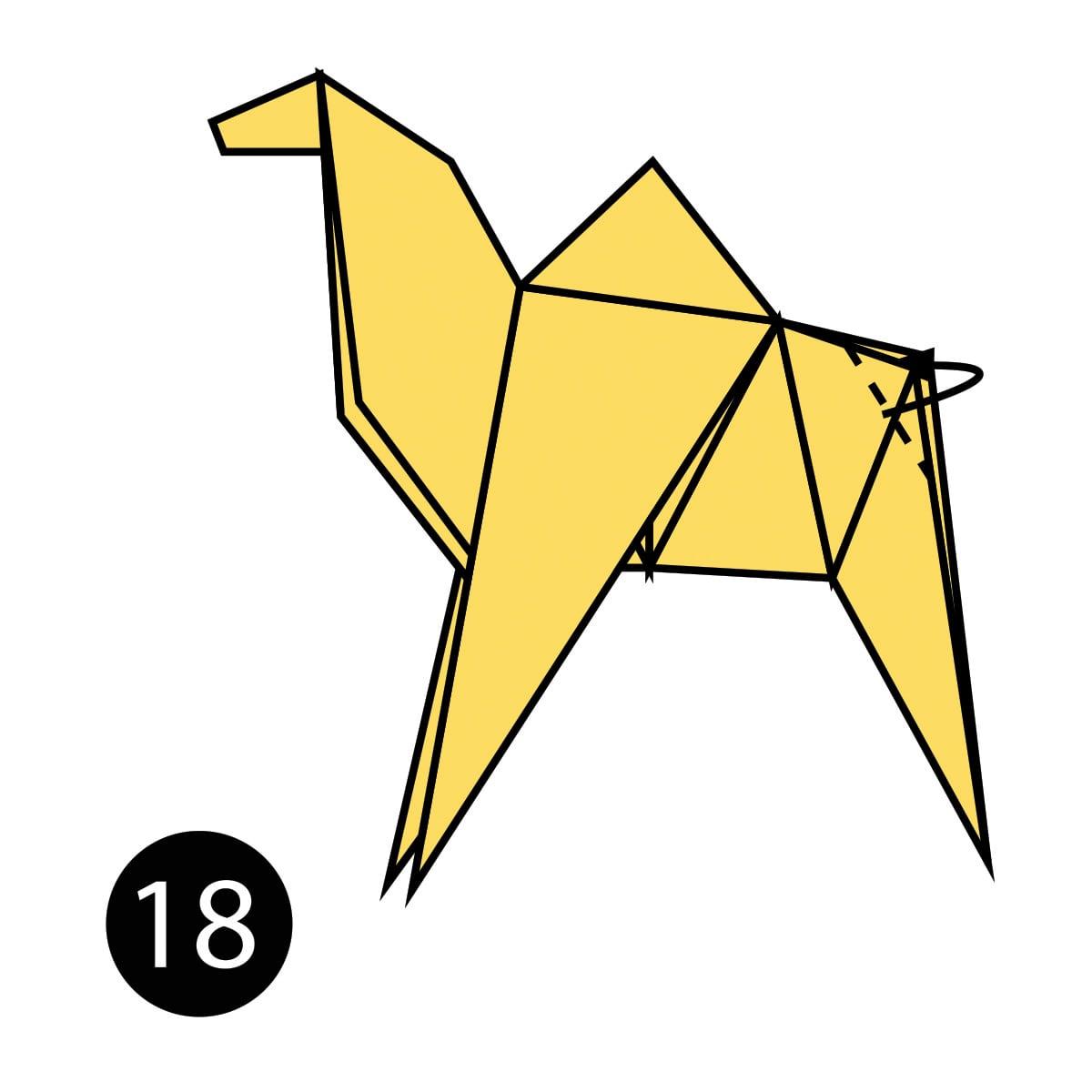 Camel Step 18