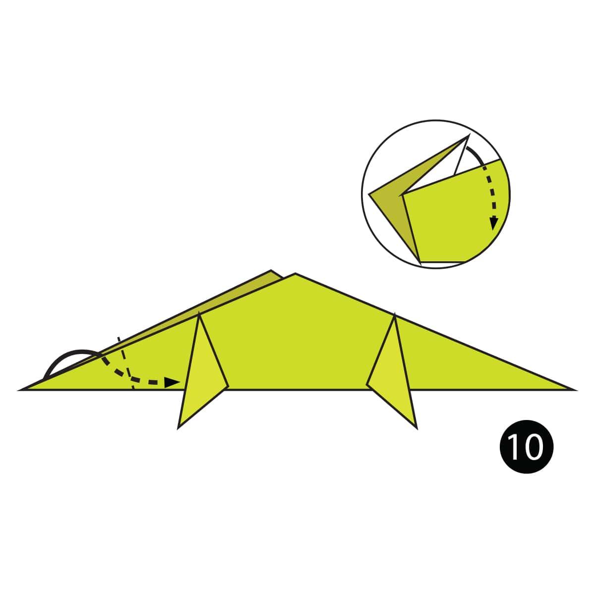 Chameleon Step 10