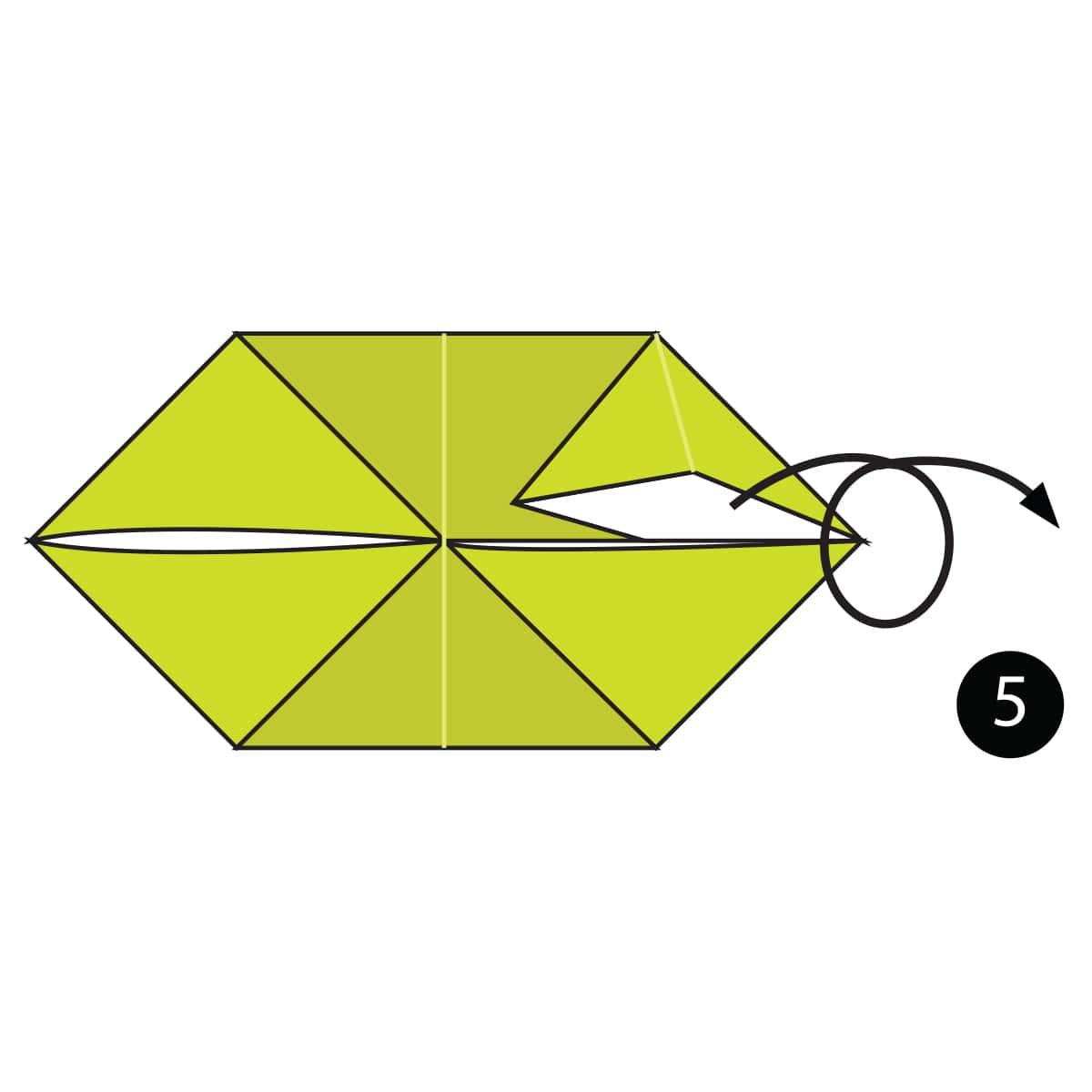 Chameleon Step 5
