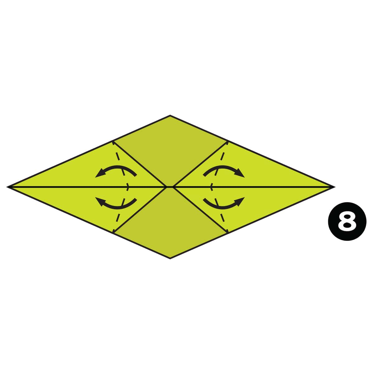 Chameleon Step 8
