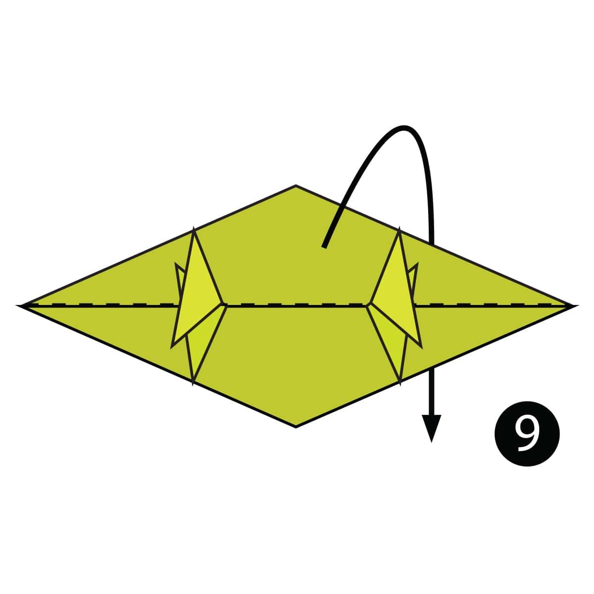 Chameleon Step 9