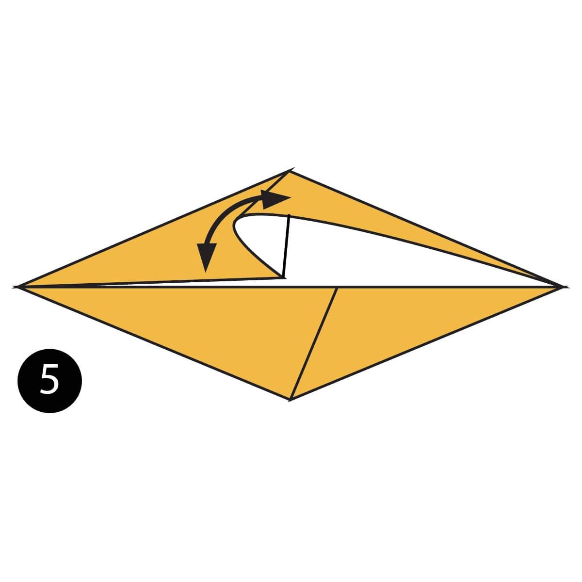 Chicken Step 5
