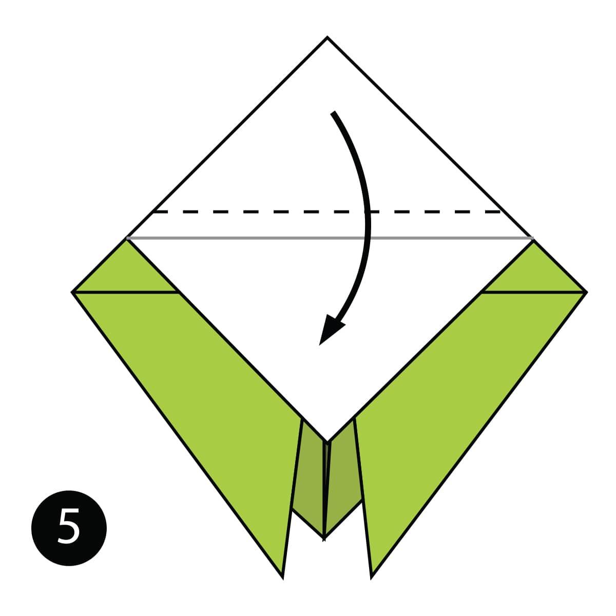 Cicada Step 5