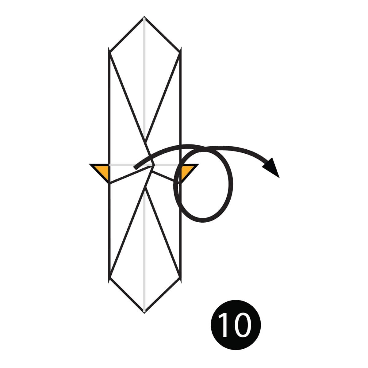 Dachshund Step 10
