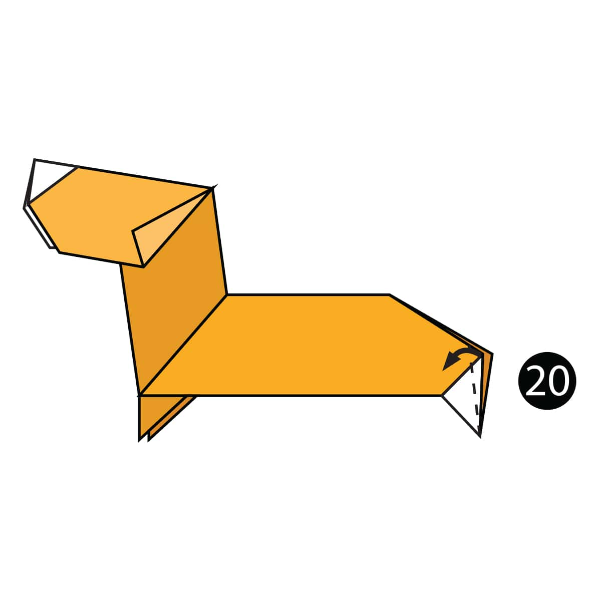 Dachshund Step 20