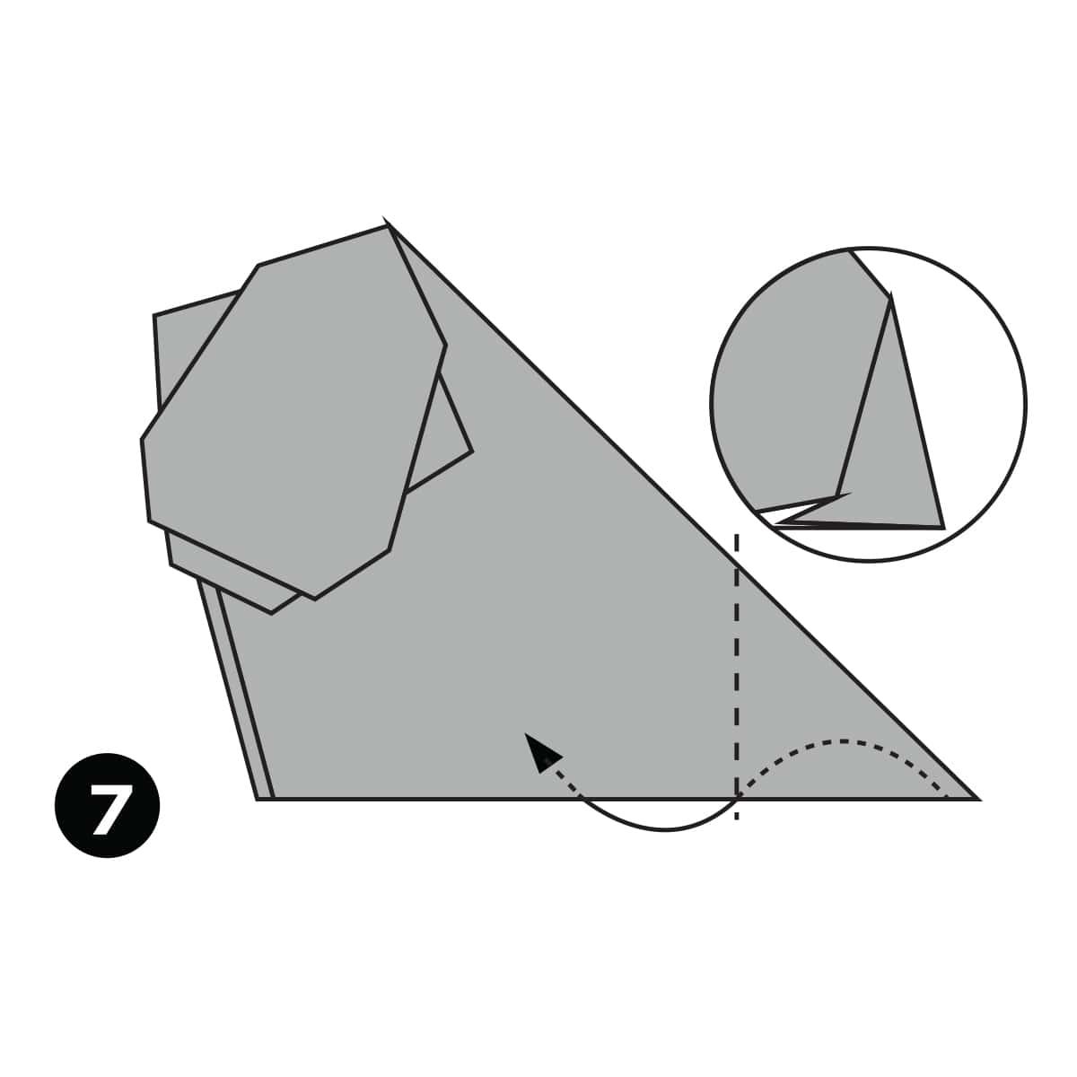 Hippo Step 7