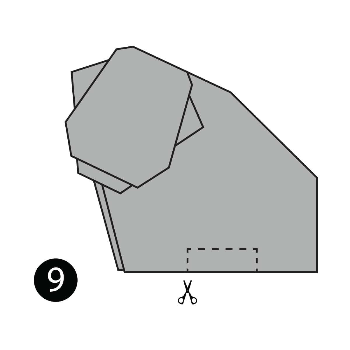 Hippo Step 9