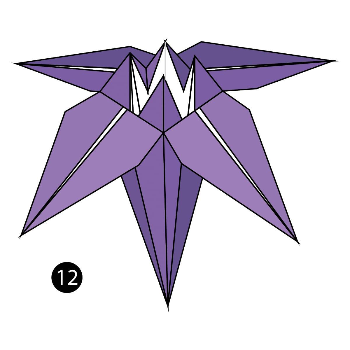 Iris Step 12